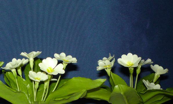Primula vulgaris - szártalan kankalin .........Clay Flowers in the Museum of Natural History - Grassalkovich Castle, Hatvan ..........Agyagvirágok a Természettudományi Múzeumban - Grassalkovich Kastély, Hatvan