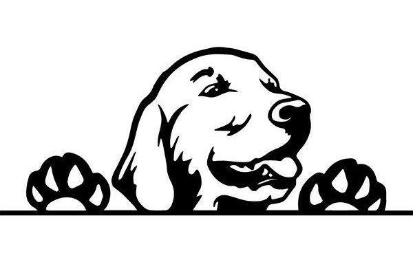 Golden Retriever 16 Peeking Smiling Canine Breed Animal Pet Pet Paws Labrador Pedigree Emblem Svg Png Clipart Vec Dog Peeking Dogs Golden Retriever Pet Paws
