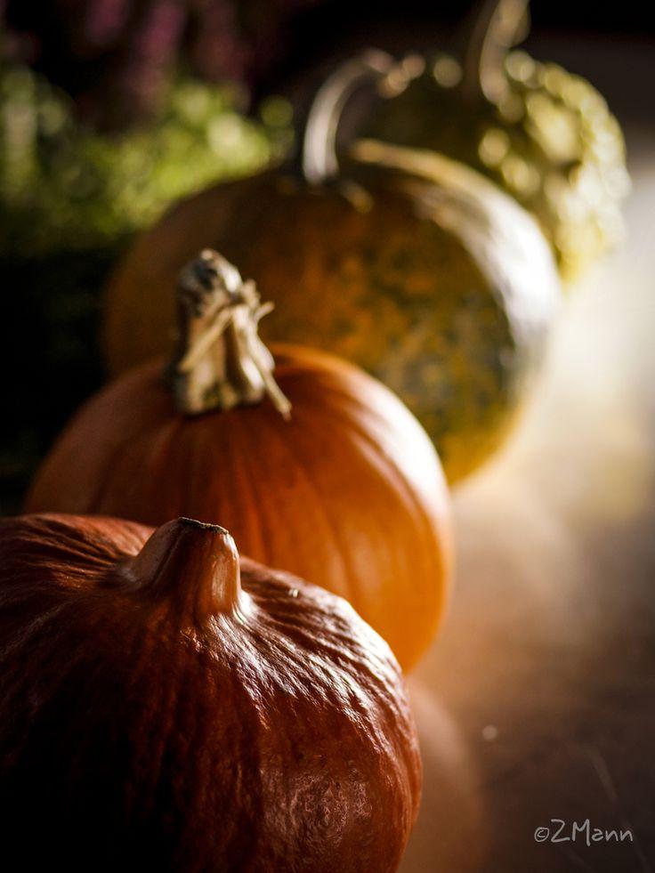 z widokiem na stół | jesienny stół - dynie