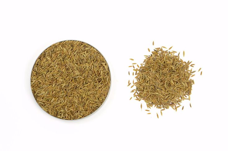 Organic Cumin Seeds, Whole | Seeds and Products