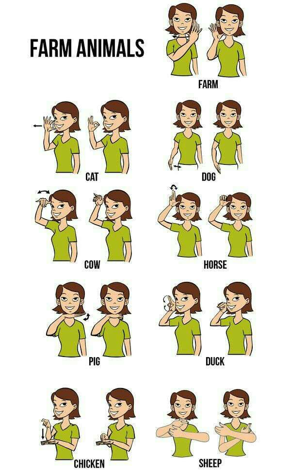 I think it's a great idea that everyone know some sign language.  it's easy for babies to learn #Family #Kids #Musely #Tip