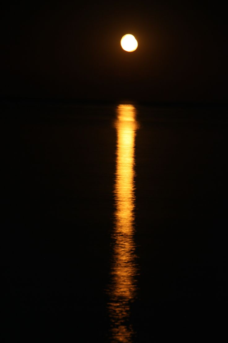 Taken in Dunsborough Western Australia reminds me of a candle. Beautiful