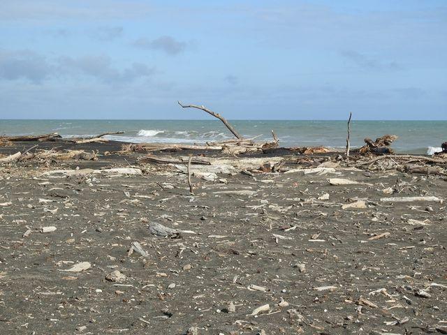 castlecliff beach, whanganui