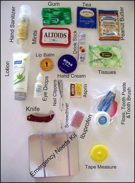 Tutorial:  Your Purse - Your Survival Bag.  Day Pouch: tea bag, peanut butter pouch, Asprin, Tooth Brush, Tooth Paste & Floss, Knife, Screwdriver, Tape Measure.  Emergency needs tin: thread and needle, button, alcohol wipes, tweezers, bandaids, nail file. *JAM*