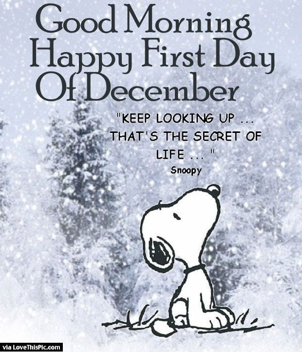 Good Morning Happy First Day Of December