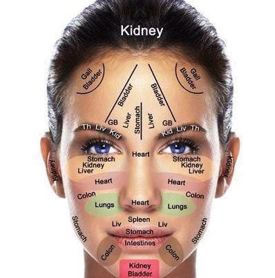 face map to determine cause of your skin breakouts