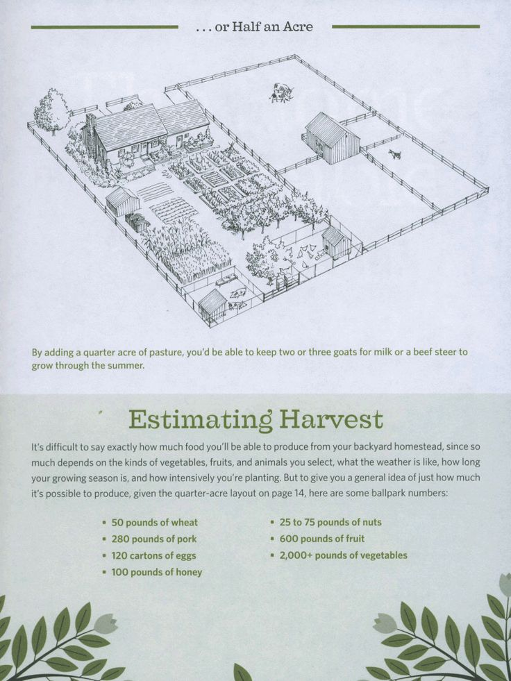 Homestead 1 2 acre gardening pinterest gardens 1 acre farm layout