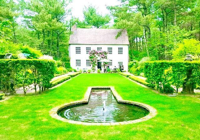 宮崎⛲英国庭園 #宮崎県#イングリッシュガーデン#薔薇#噴水 #ティーハウス#緑#englishgarden#rose#teahouse
