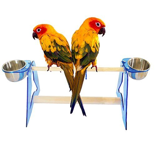 Parrot Stands Acrylic Bird Cage Stands Stands Bird Table Stands Bird Training Tripod Hamster Squirrel Cage Stands with Stainless Steel Food ContainersStand Frame Height 551in Rod Length 788in M * Be sure to check out this awesome product.(This is an Amazon affiliate link and I receive a commission for the sales)