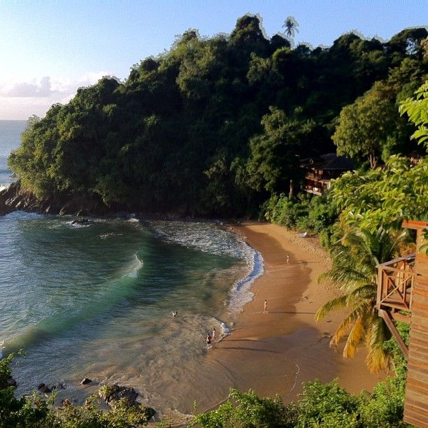 Best Places To Travel In September In The Caribbean: 106 Best Images About Uncommon Trinidad & Tobago On Pinterest