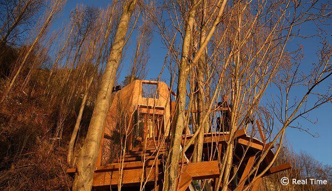 68 fantastiche immagini su la mia casa sull 39 albero su for Aiutami a disegnare la mia casa