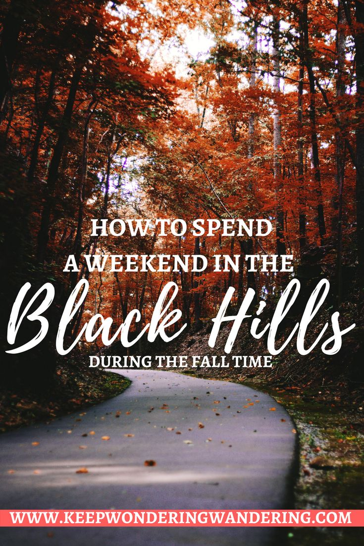Looking for a quick fall inspired weekend getaway? Here's how you can spend a weekend in the Black Hills, which is especially gorgeous in the autumn months.