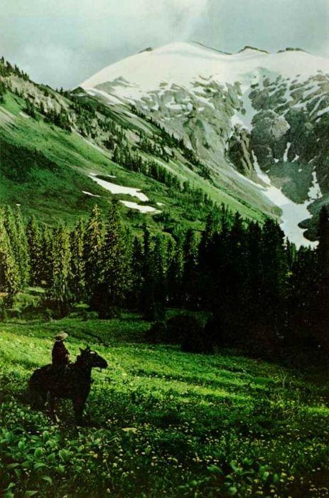 heath ledger, jake gyllenhaal, Life Lessons in 'Brokeback Mountain' (Movie Review)
