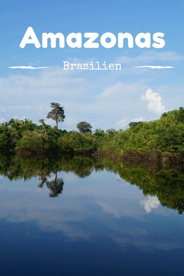 Abenteuer Amazonas Regenwald in Brasilien! Tipps für deine Reise nach Brasilien. Tipps für deinen Aufenthalt in einer Amazonas Lodge. Mit Hoteltipp in Manaus.