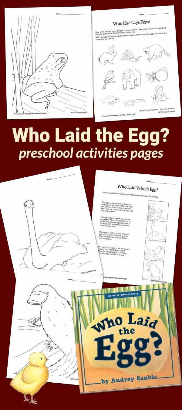 Learning About Eggs Preschool Activity Pages With Images