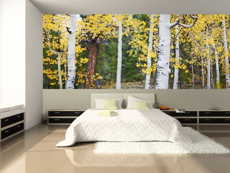1000 ideas about tree wall murals on pinterest tree for Aspen wall mural
