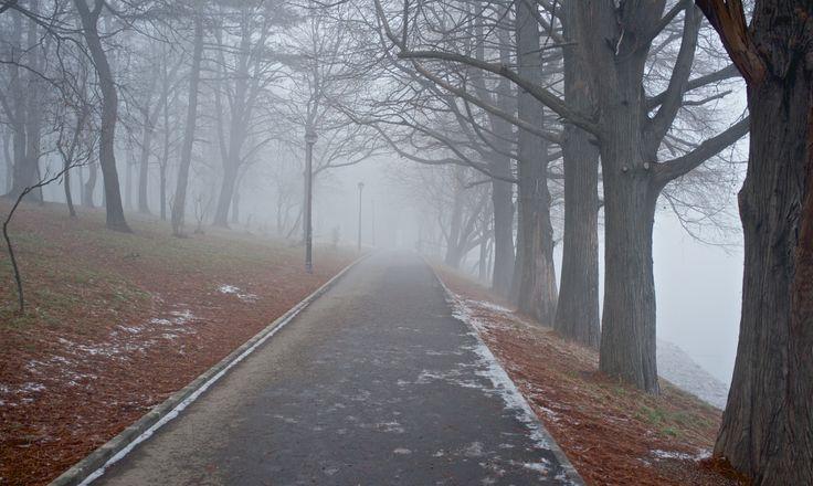 winter Bucharest