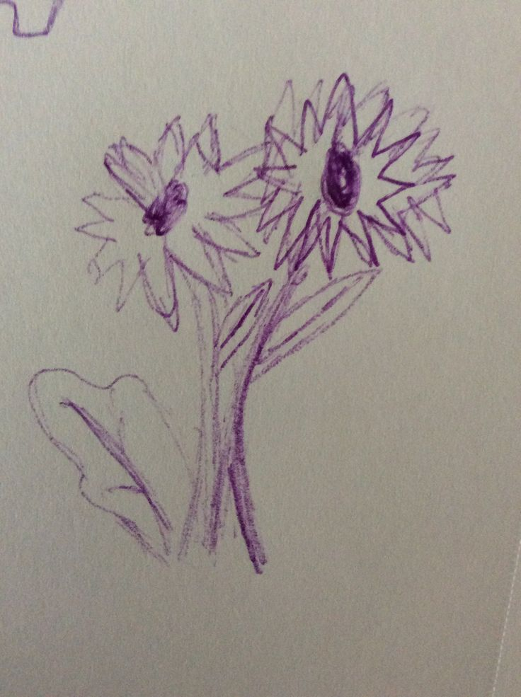 Messy drawing of my flowers.