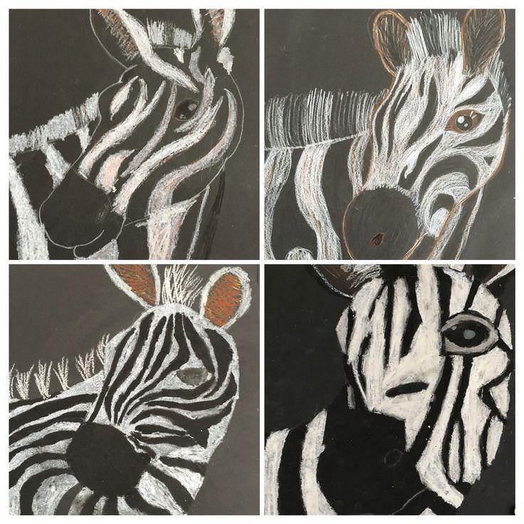 Zebra's op zwart papier met wasco of kleurpotlood. Gemaakt door groep 8 van obs de Wilgenhoek uit Haarlem.