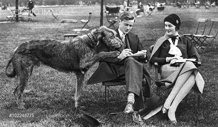 Mr and Mrs Bryan Guiness (1910 - 2003), formerly Miss Diana Freeman Mitford, later Lady Mosley, pictured enjoying a 'quiet half-hour' in Hyde Park with their immense Irish wolfhound.