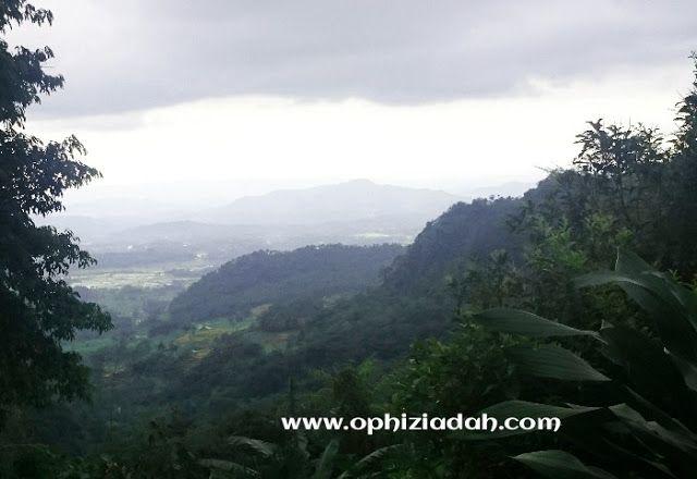 Anggunnya Curug Cipendok di Rimba Gunung Slamet