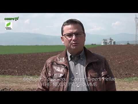 ΘΟΔΩΡΗΣ ΧΡΥΣΟΧΟΟΥ κατά την έναρξη του NEXUR Programme - YouTube