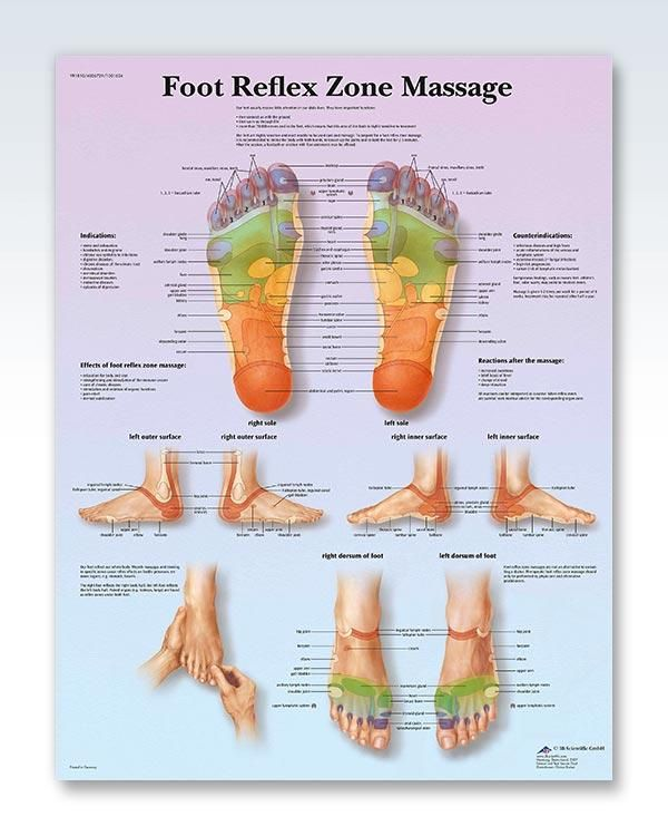178 Best Doctors Anatomy Posters Images On Pinterest