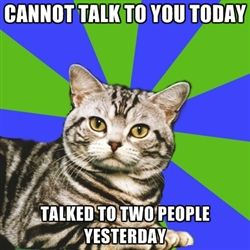 Cannot talk to you today, talked to two people yesterday. Introvert Cat                                                                                                                                                                                 More