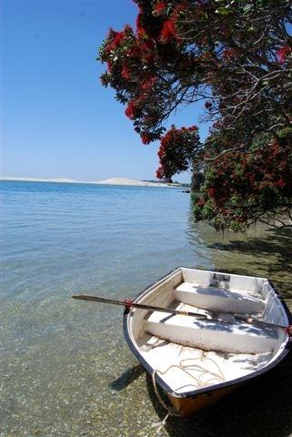 NZ Summer, Mangawai,Northland, New Zealand