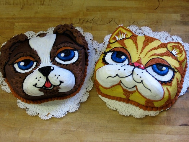 The 27 best images about Cat cakes & Cupcakes on Pinterest ...