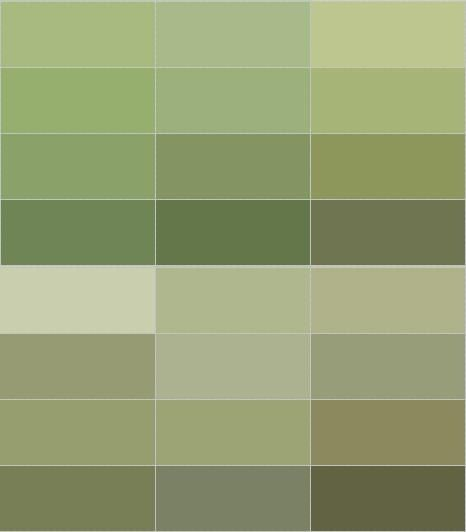 Best Olive Green Wall Color