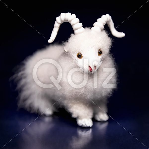 Qdiz Stock Photos | Goat or sheep the symbol 2015 year,  #2015 #asia #background #black #blue #celebrate #celebration #character #china #chinese #closeup #concept #culture #decoration #doll #east #ewe #festival #festive #figure #fun #funny #goat #greeting #holiday #japanese #jumbuck #lamb #little #mutton #new #religion #sheep #small #symbol #toy #tradition #traditional #white #year #zodiac