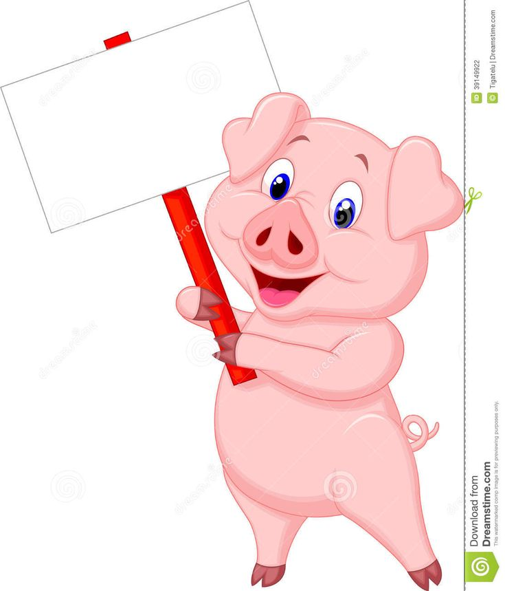 Pig Cartoon Holding Blank Sign Download From Over 36 Million High Quality Stock Photos Images