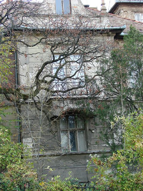 Building under Gellert Hill