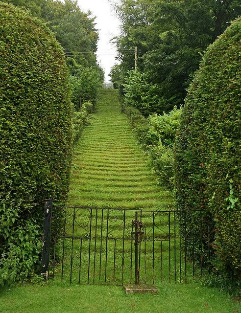 111 Grass Steps, Leading to the Chapel of St Catherine, Milton Abbey - Dorset, England