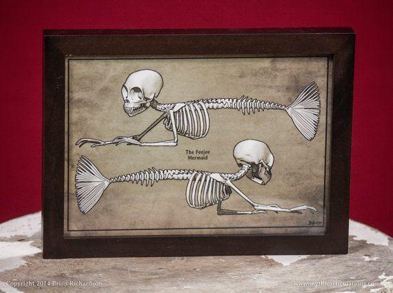 Fiji/Feejee Mermaid Skeleton FauxScientific by MythicArticulations, $15.00