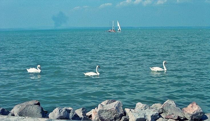Balaton- Hungarian Sea 4
