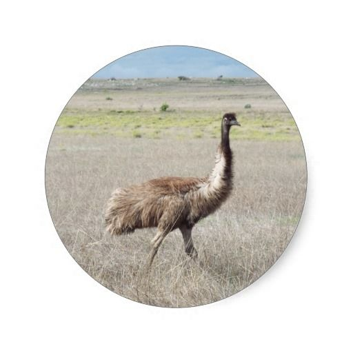 emu stride