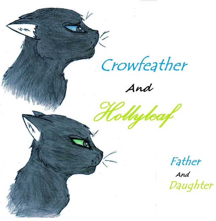 Crowfeather and Leafpool mate to give birth to Hollyleaf, Jayfeather and Lionblaze.