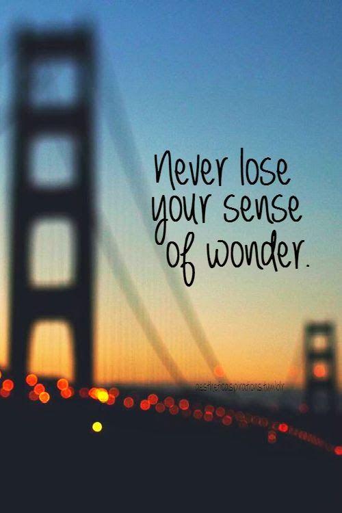 Never lose your sense of wonder | http://pinterest-hot-pins.blogspot.com/