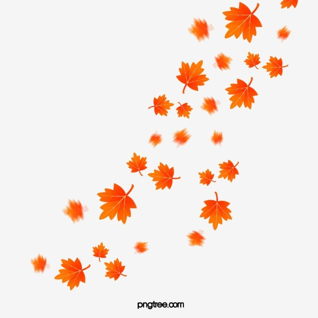 Maple Leaf Maple Leaf Clipart Fall Png Transparent Clipart Image And Psd File For Free Download Leaf Clipart Maple Leaf Clipart Leaf Background