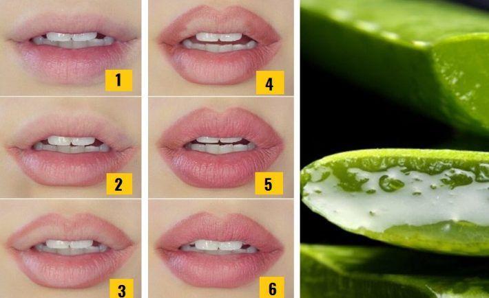 Máte pery nevýrazné, bez života? Vyskúšajte týchto 10 prírodných receptov, vďaka ktorým budú vaše pery krásne, jemné a ružové. | Báječné Ženy