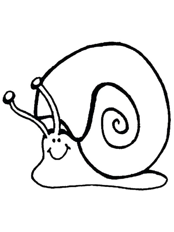 Snail Body Coloring Page. Snails are animals originating ...