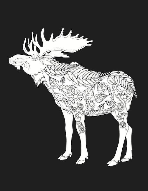 Coloring Pages, Coloring Books, Colouring, Moose, Animals, Embroidery  Patterns, Artists, Deer, Paint