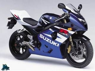 After the Kawasaki's, i thought the Suzuki GSXR 600 was the answer, I was wrong.