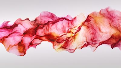 Play with silk.  Love this digital silk program - free - easy and beautiful. Great procrastination tool <3