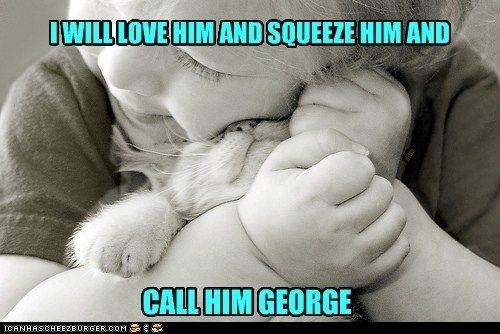 Love!: Friends, Need A Hugs, Pet, Cat Meow, Bears Hugs, Baby Animal, Cat Lovers, Kid, Baby Cat
