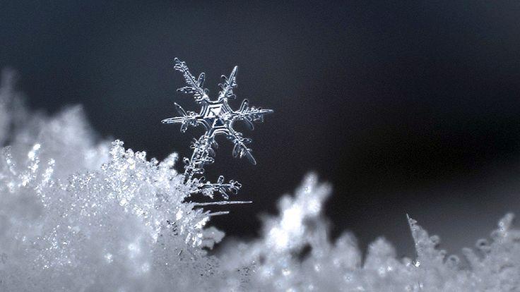 Aus der Sendung Weiß wie Schnee. 3 Sat