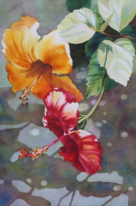 Yellow and Red Hibiscus Watercolor by Anne Abgott / Floral Art