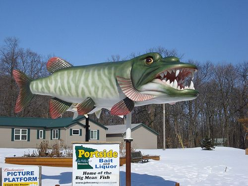 188 best images about bobs fishing on pinterest lakes for Best fishing in minnesota